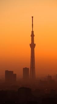 Sylwetka tokio niebo drzewo budynku i krajobraz miasta wieczorem zachód słońca.