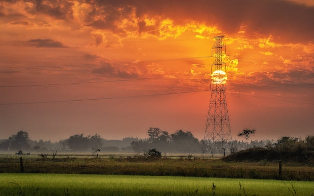 Sylwetka wysokiego napięcia słup elektryczny na środku pól ryżowych rano.