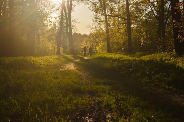 Sylwetki dwojga ludzi na ścieżce w parku
