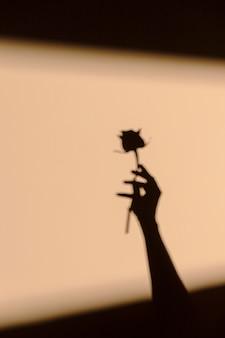 Sylwetki kobiety trzymającej kwiat