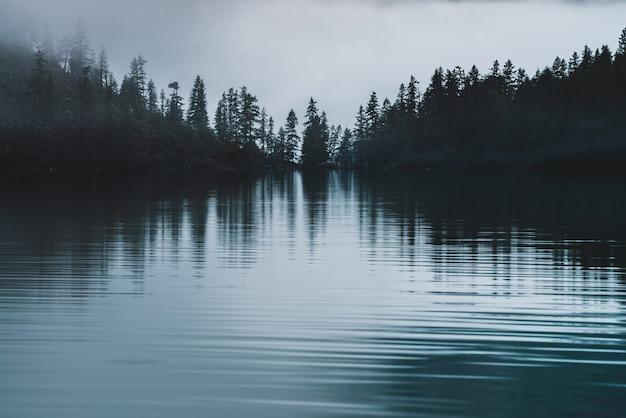 Sylwetki spiczastych wierzchołków drzew na zboczu wzgórza wzdłuż górskiego jeziora w gęstej mgle. odruch sosen na uspokajające wody jeziora górskiego. alpejski spokojny krajobraz wczesnym rankiem. widmowa, klimatyczna sceneria.