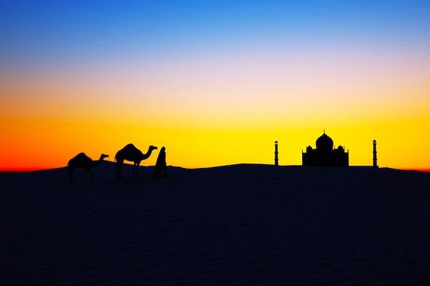 Sylwetki wielbłądów na pustyni o zachodzie słońca wielbłądy i mężczyzna chodzący po piasku karawana o