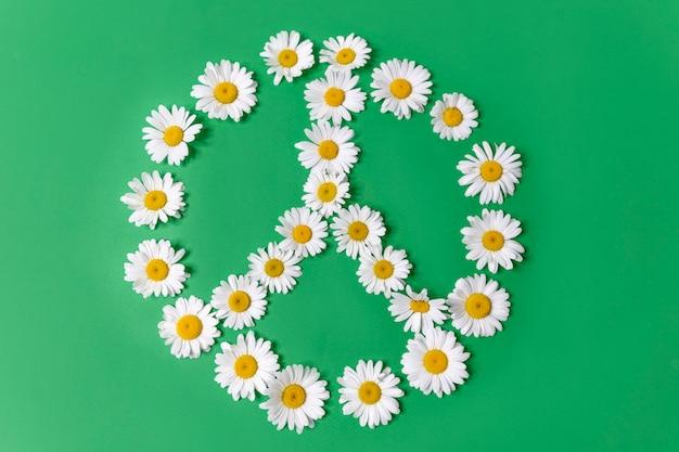 Symbol pokoju wykonany z białych stokrotek na białym tle na zielonym tle.