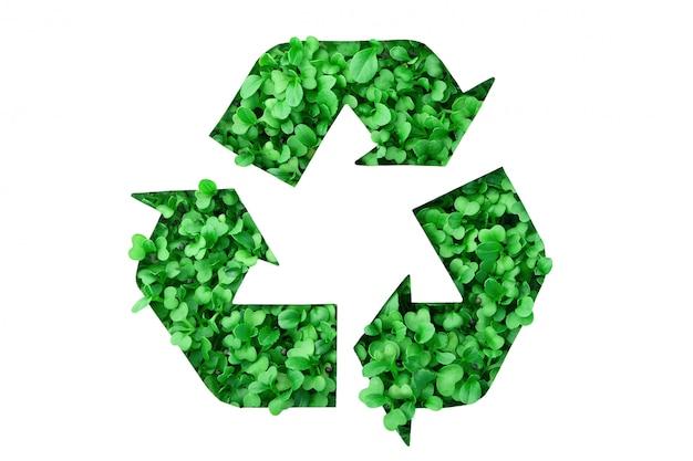 Symbol recyklingu wykonany z zieleni rosnącej w szablonie papieru