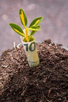 Symbol wzrostu gospodarczego: banknot stu euro z rośliną lub liściem wyrastającym z ziemi z zielonym rozmytym tłem