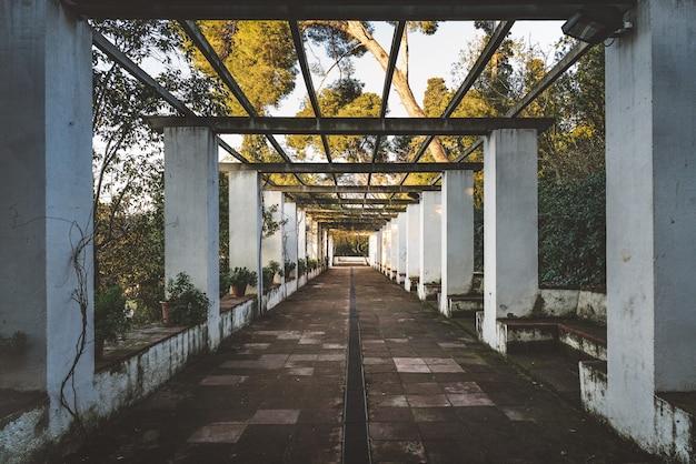 Symetryczny widok na korytarz ogrodu w stylu romantycznym przykryty starą pergolą