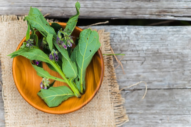 Symphytum officinale, inne gatunki symphytum, żywokost w drewnianym ekologicznym talerzu na starym stole vintage. nieostrość.