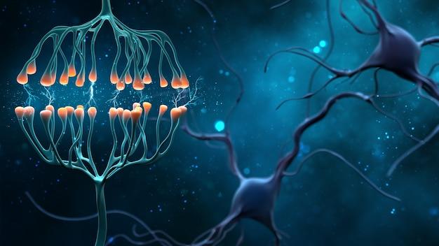 Synapsa i komórki neuronowe wysyłające elektryczne sygnały chemiczne