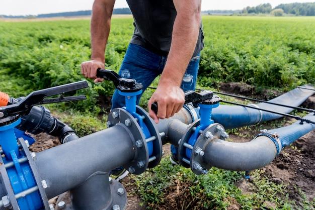System nawadniania kropelkowego. energooszczędny system nawadniania kropelkowego stosowany w polu młodych marchwi. pracownik otwiera kran