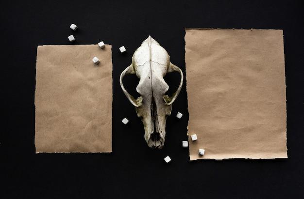 Szablon makiety papieru kraft na czarnym tle z magicznym tajemniczym nastrojem