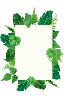 Szablon ramki zielony tropikalny kwadrat zielonych liści