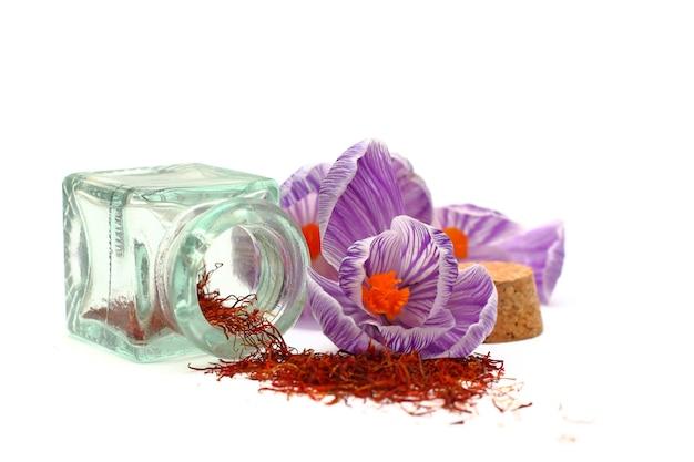 Szafran - przyprawy i kwiaty na białym tle