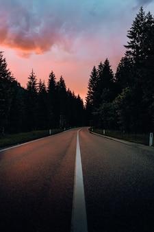 Szara droga betonowa między zielonymi drzewami pod zachmurzonym niebem w ciągu dnia