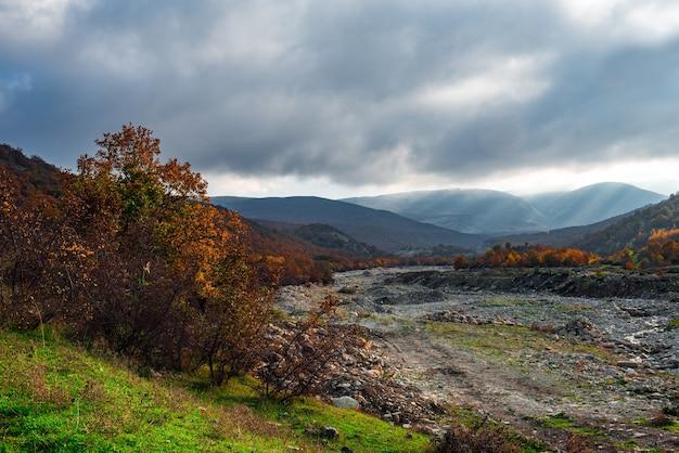 Szare chmury nad jesiennym górskim lasem