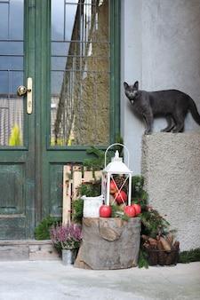 Szary kot i świąteczne dekoracje w pobliżu domu