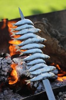 Szaszłyk z pni oliwnych sardynek i ognisko z plażą