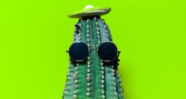 Szczegół portret kaktusa z meksykańskim kapeluszem i okularami przeciwsłonecznymi, na białym tle na tle koloru zielonego.
