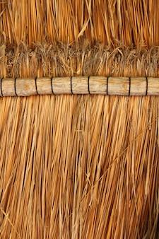 Szczegółowo drewniany dach z drewna palapa meksyk