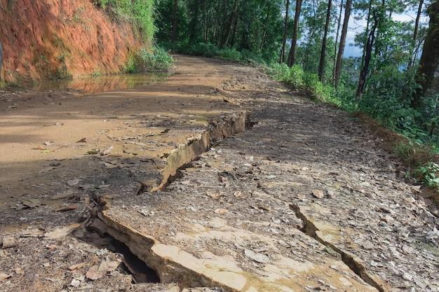 Szczegóły dotyczące oddzielenia drogi żwiru w wiejskim lesie.