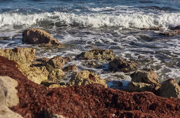 Szczegóły fal morskich rozbijających się na skalistym wybrzeżu w meksyku #3