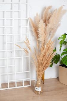 Szczegóły wnętrza. trawa pampasowa w naturalnych odcieniach. naturalność, ekologia, natura. projekt. zdjęcie wysokiej jakości