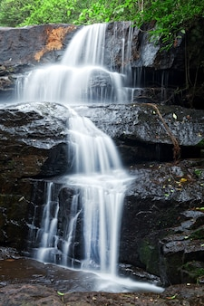 Szczegóły wodospadu w tropikalnym lesie