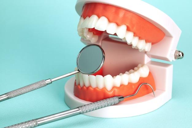 Szczęka z narzędziami dentysty na zielonym tle.