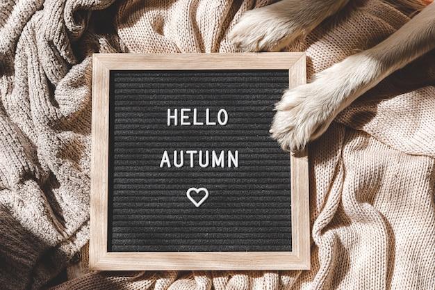 Szczeniak łapy psa i czarna tablica z tekstem hello autumn na białym swetrze z dzianiny