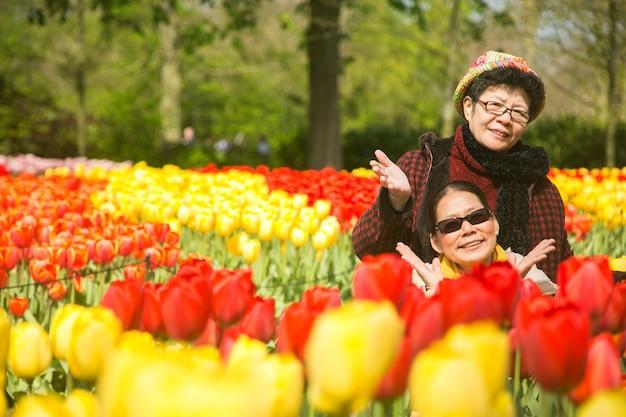 Szczęście seniorów azjatyckich w ogrodzie tulipanów keukenhof.