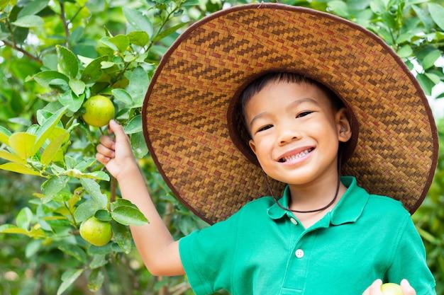 Szczęśliwa azjatycka dziecko chłopiec zbiera wiele wapno przy gospodarstwem rolnym