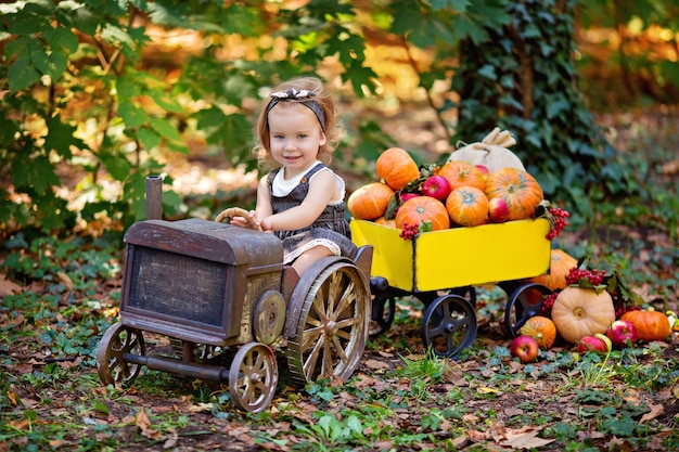 Szczęśliwa dziewczyna w jesiennych zbiorach ciągnika. wózek z dyniami, kaliną, jarzębiną, jabłkami