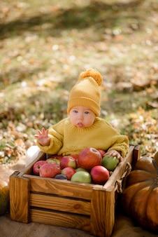 Szczęśliwa dziewczynka z koszem z jabłkami plenerowymi w jesień parku