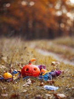 Szczęśliwa halloweenowa bania z szczęśliwą twarzą w jesień lesie