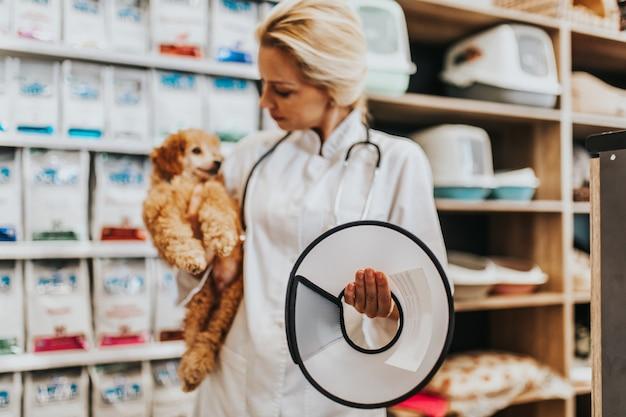 Szczęśliwa i uśmiechnięta kobieta weterynarz w średnim wieku, stojąc w sklepie zoologicznym i trzymając ładny miniaturowy czerwony pudel patrząc na kamery.