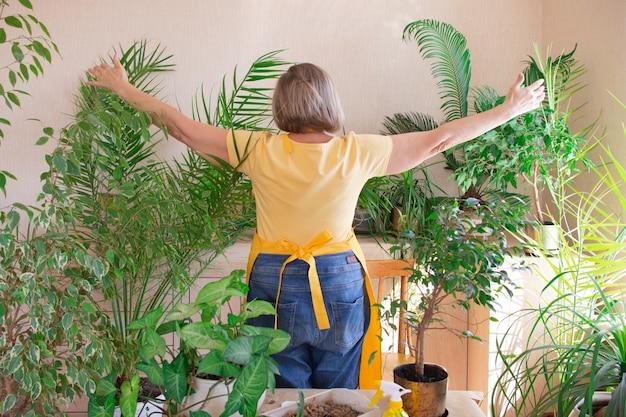 Szczęśliwa kobieta od tyłu przytula rośliny rękoma i dba o rośliny w doniczce