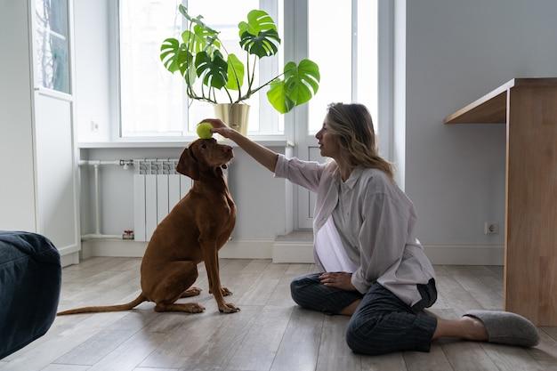 Szczęśliwa kobieta właścicielka z psem wyżeł węgierski krótkowłosy bawi się piłką tenisową w domu, siedząc na podłodze
