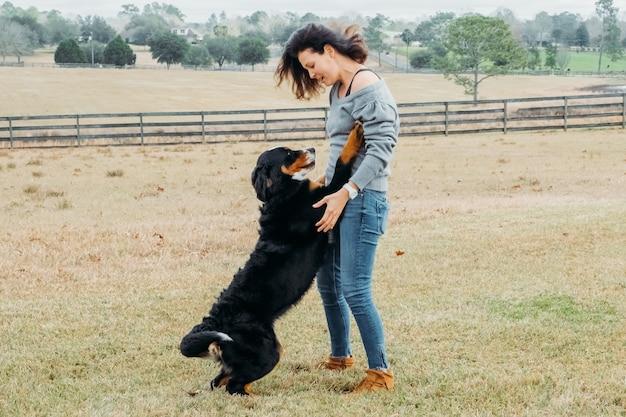 Szczęśliwa kobieta z aktywnym psem grającym na zewnątrz wesoły właściciel i duży berneński pies pasterski bawią się na polu z wiejskim krajobrazem