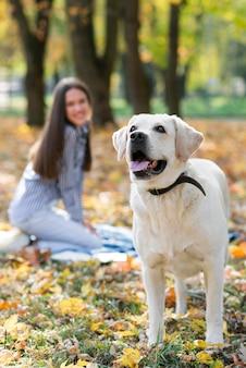 Szczęśliwa kobieta z ślicznym labradorem w parku