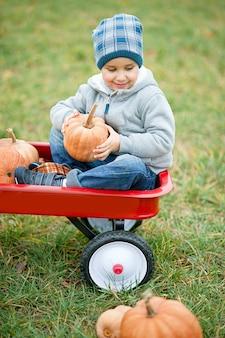 Szczęśliwa mała berbeć chłopiec na dyniowej łatie na zimnym jesień dniu