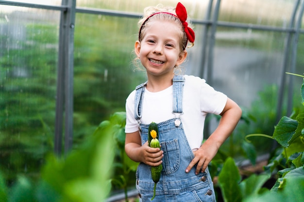 Szczęśliwa mała blondynka w szklarni z ogórkami w dłoniach koncepcja pielęgnacji roślin dla ogrodnictwa