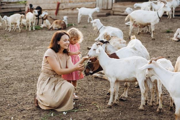Szczęśliwa matka i jej córka karmią kozy na ekologicznej farmie.