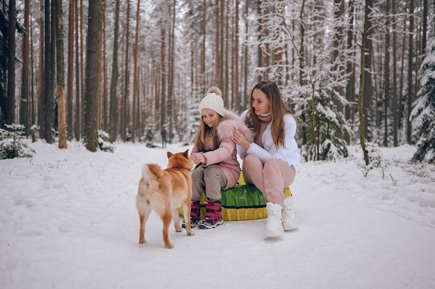 Szczęśliwa matka i mała urocza dziewczynka w różowym ciepłym stroju wierzchnim, chodzenie, zabawa jeździ nadmuchiwaną rurą śnieżną z czerwonym psem shiba inu w śnieżnobiałym zimnym lesie na zewnątrz