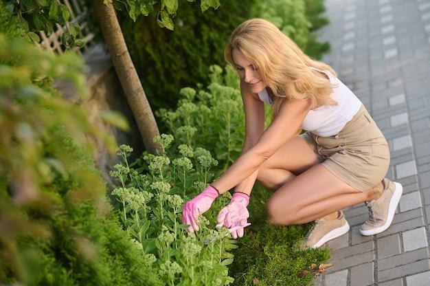 Szczęśliwa piękna kobieta w średnim wieku ogrodnictwo