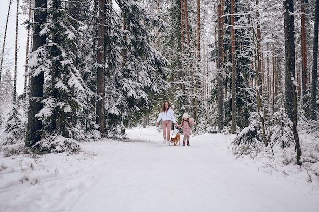 Szczęśliwa rodzina młoda matka i mała śliczna dziewczyna w różowym ciepłym znoszeniu spacery, zabawy z czerwonym psem shiba inu w śnieżnobiałym zimnym lesie na zewnątrz. rodzinne zajęcia sportowe.