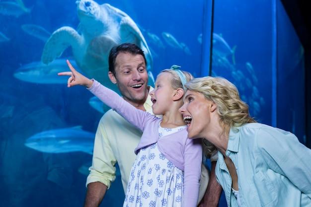 Szczęśliwa rodzina patrząc na akwarium