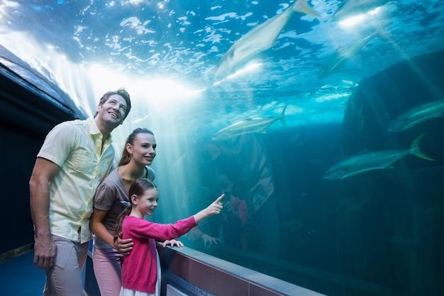 Szczęśliwa rodzina patrząc na zbiornik