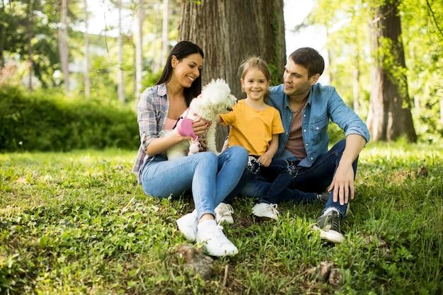 Szczęśliwa rodzina z ślicznym bichon psem w parku