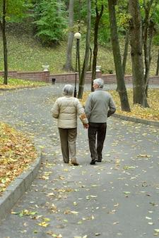 Szczęśliwa starsza para siedzi w jesiennej przyrodzie