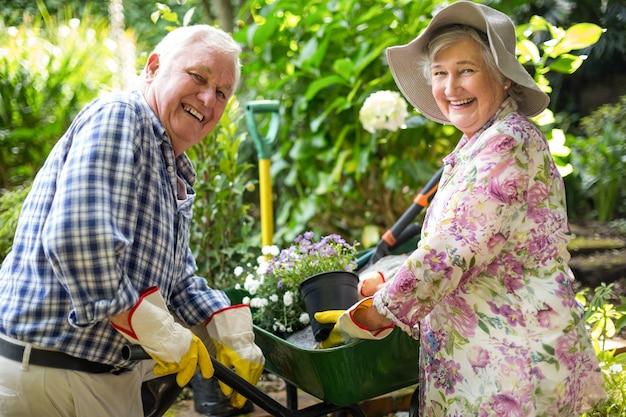 Szczęśliwa starsza para z doniczkowymi roślinami