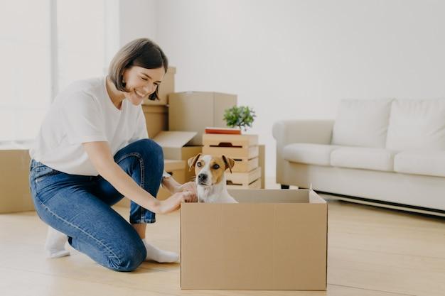 Szczęśliwa urocza kobieta ubrana w zwykłe ubrania, bawi się z ulubionym zwierzakiem, który pozuje w kartonowym pudełku